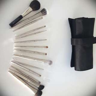 14 Piece Professional Brush Set