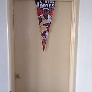 Lebron James Miami Heat Player Flag