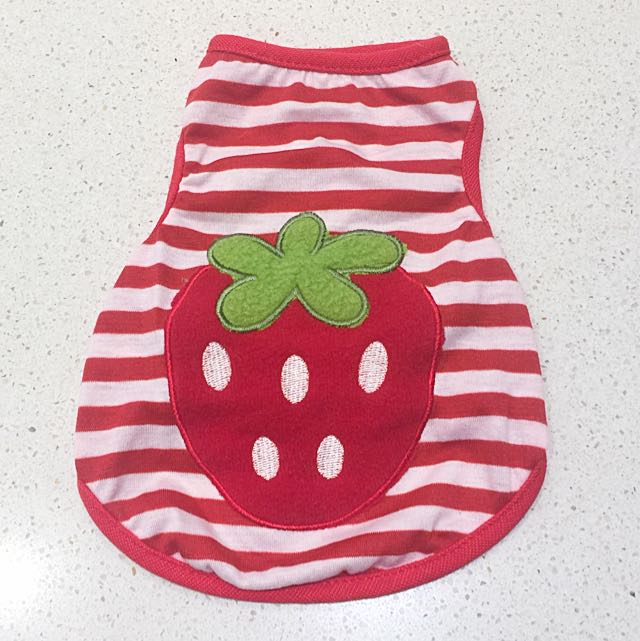 Big Strawberry Pet Outfit