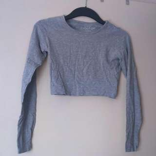 Grey Long Sleeved Crop Top
