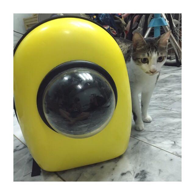 寵物太空包
