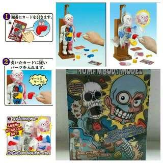 人體器官模型😲日本玩具大賞第一名💯