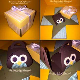 Cute Owl Explosion Box
