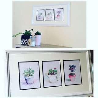 Watercolour Succulent Paintings