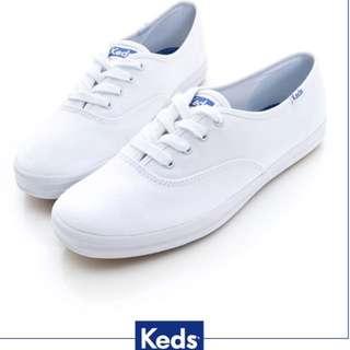 Keds 經典長青帆布鞋