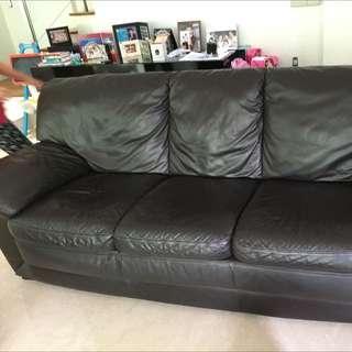 Full Leather Dark Brown Sofa