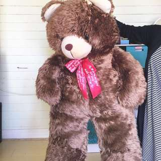 GIANT BROWN TEDDY BEAR - URGENT NEEDS TO BE GONE!