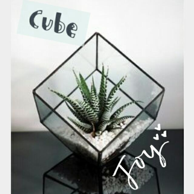 Avail Geometric Terrarium Square Cube Glass Planter Gardening On