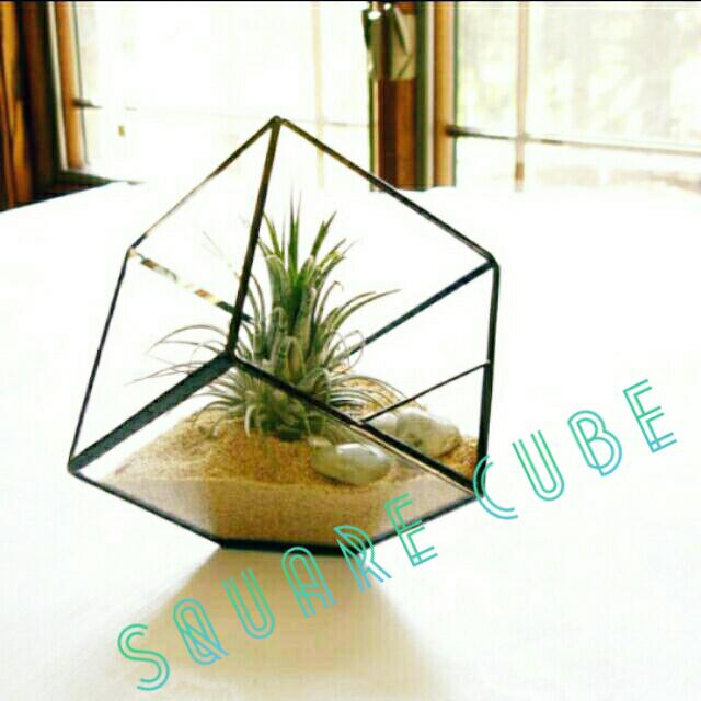 Large In Stocks Geometric Square Cube Terrarium Glass Planter