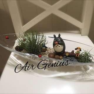 《空氣精靈Air Genius》空氣鳳梨-龍貓系列-療癒系列-辦公室小物