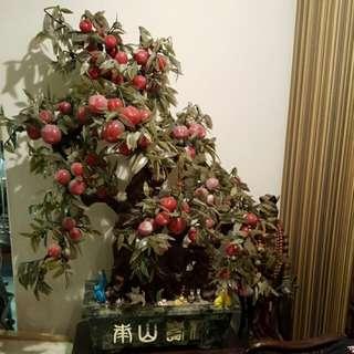 Full Jade Peach Tree