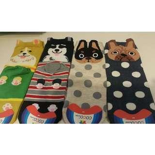 全新韓國狗仔型形棉襪