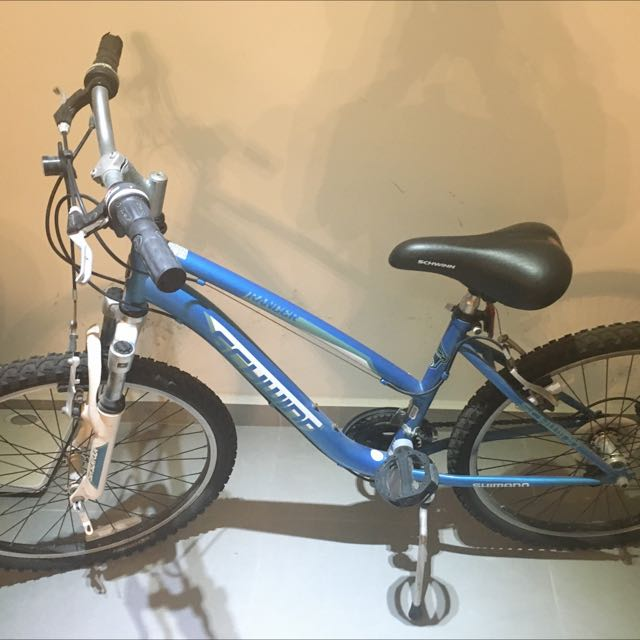 Mountain bike (Moving Out Sale)
