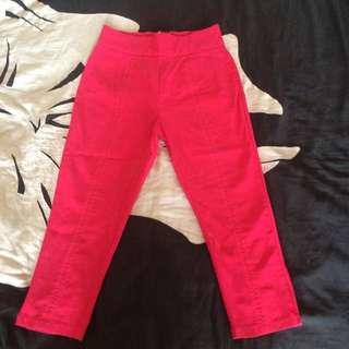 NEW high Waist Pink Capri Pants By Sourpuss