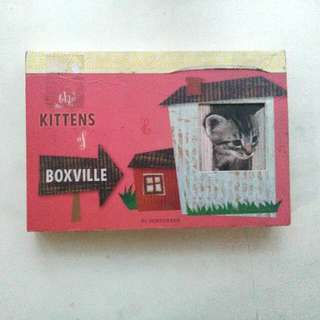The Kittens Of Boxville Postcard Book