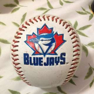 Blue Jays Baseball Caught At The Game