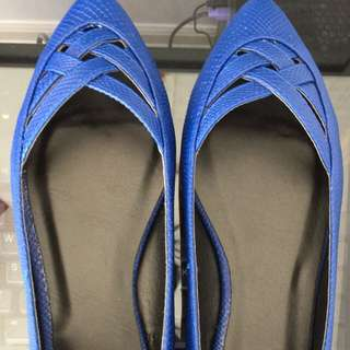 Blue Flats (size 7)