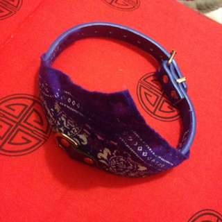 Blue Dog Collar For Small Dog