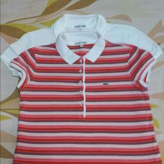 LACOSTE- Polo Tee ( With Design)