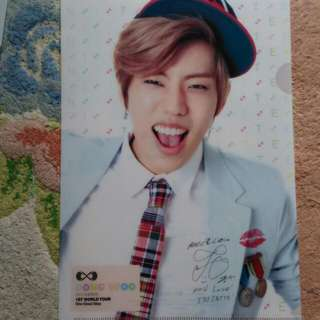 Infinite Official A4 Clear File One Great Step Dongwoo