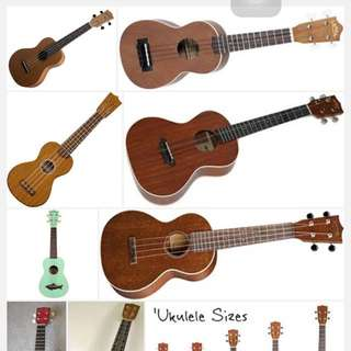 Looking For A Ukulele