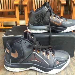 Nike Lebron Ambassador VII (New)