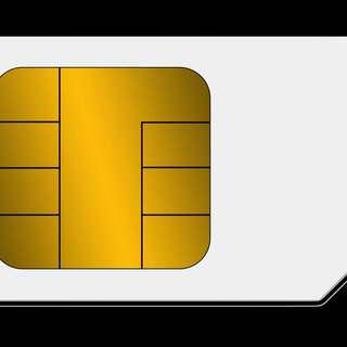 Prepaid Sim Card$1