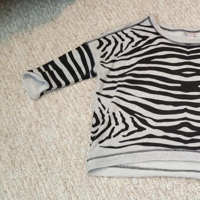 Zebra 1/3 Sleeve