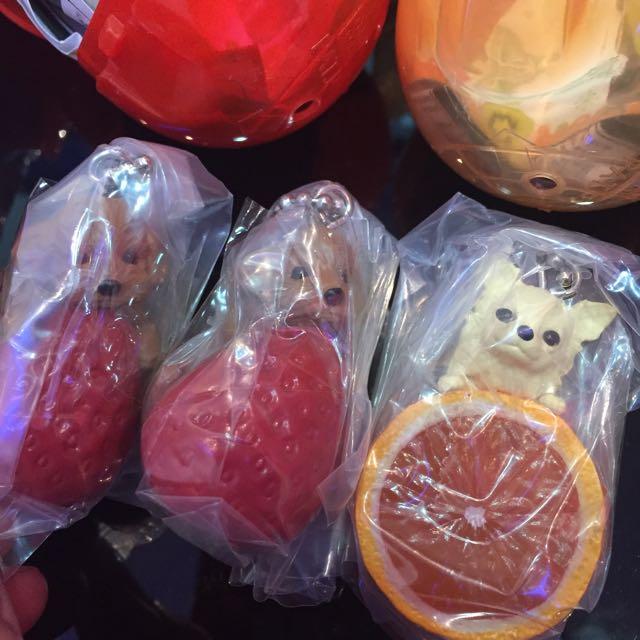 水果狗 點心狗 麵包狗 草莓紅貴賓 柳橙吉娃娃 西瓜臘腸 扭蛋現貨