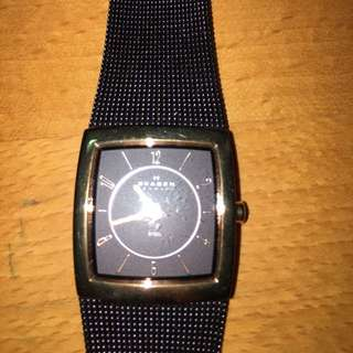 Skagen Brown Watch