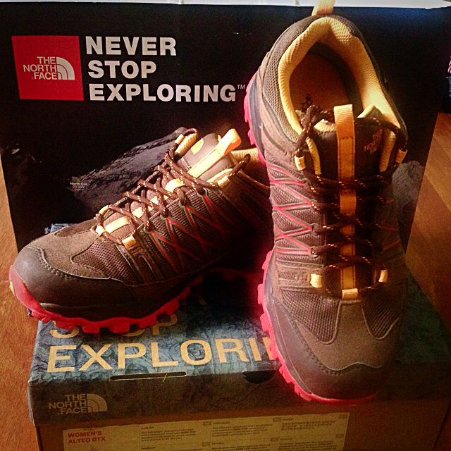 RUSH SALE! The North Face Alteo GTX