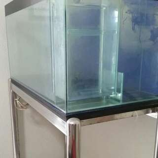 3ft Tank To Let Go With Stainless Steel Frame