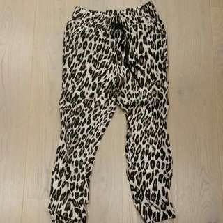 MNG leopard joggers size M