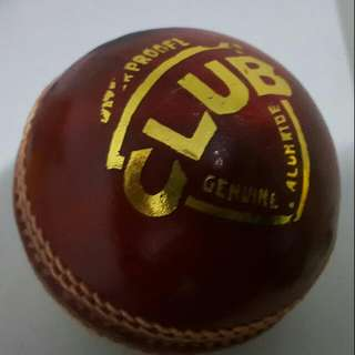 4 piece geniune leather Cricket Ball