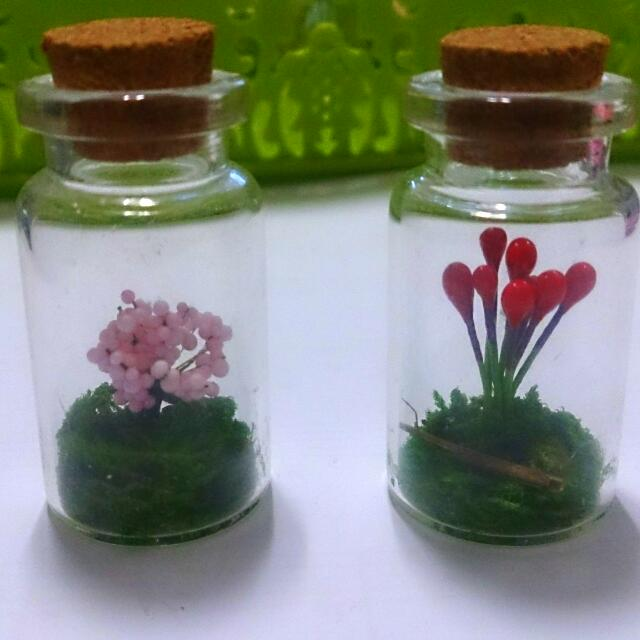 自然風植物瓶
