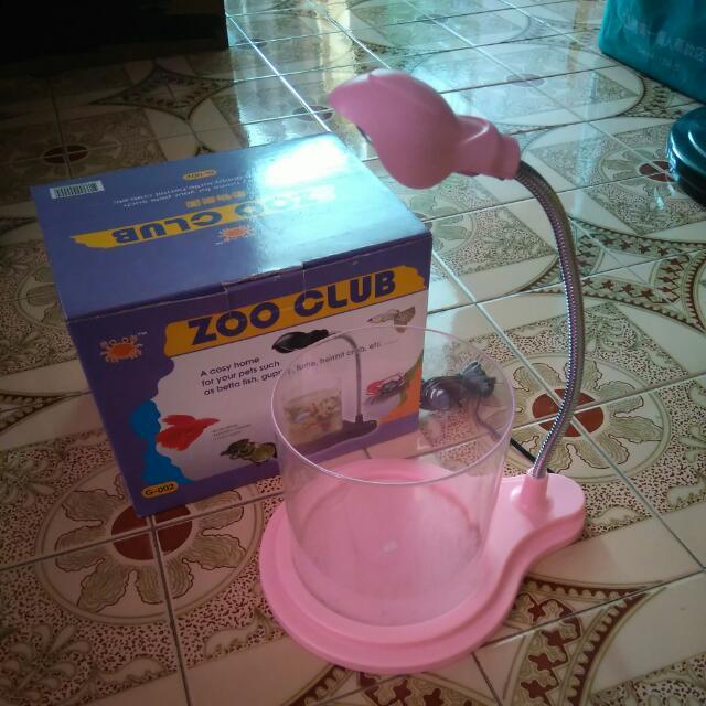 桌上型魚缸 二手