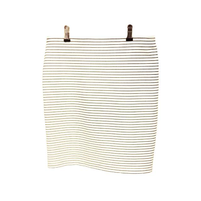 Ivory Skirt With Black Stripes