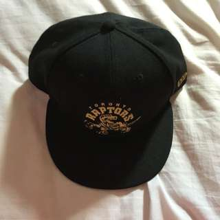 Raptors Hat
