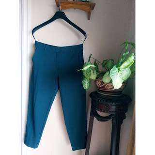 Marks & Spencer Ankle Length Pants in Green