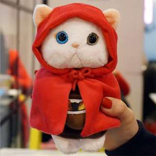 Korean ChooChoo Cat Iphone 6plus Cover