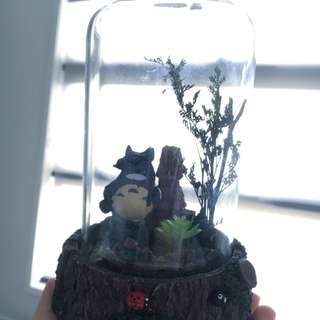 Totoro Musical Glass Box Collection