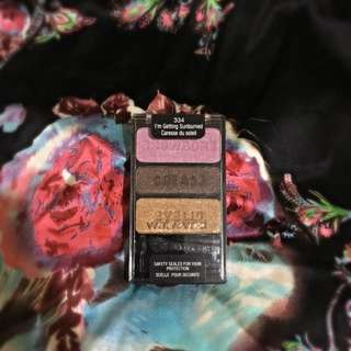 Wet n Wild Eyeshadow Trio