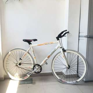 FREE Road Bike