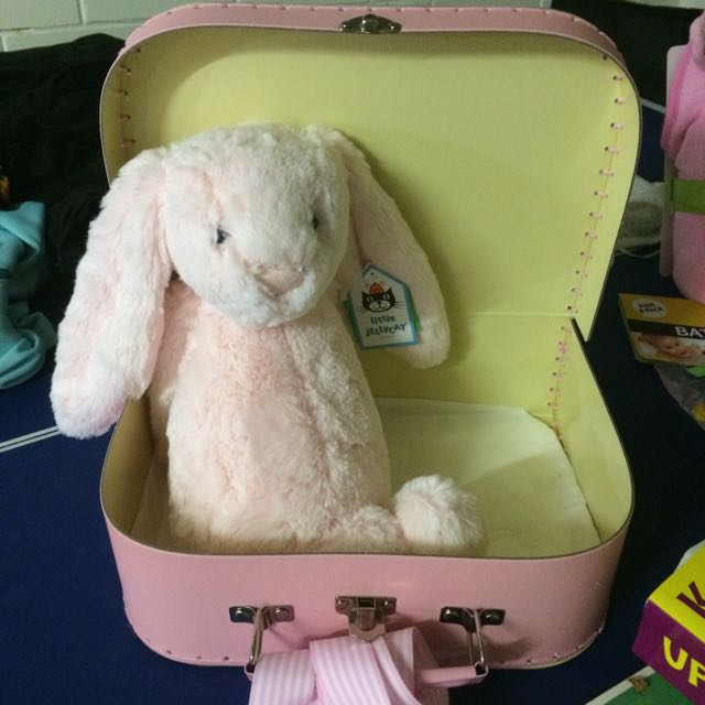 Bunny And Suit Case