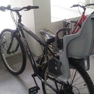 *reserved* Adult Bike With Kids Seat