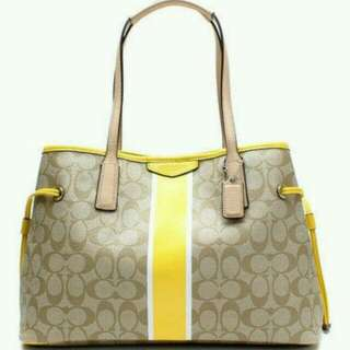 Coach Signature Tote In Khaki And Yellow