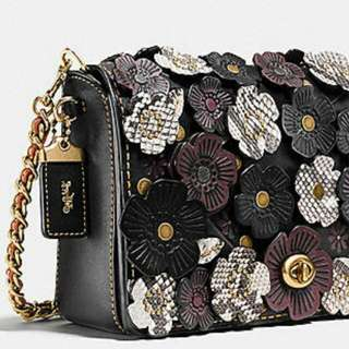 Coach Exotic Leather Tea Rose Applique Dinky 24 In Glovetanned Leather