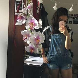 Cute Overalls 🌹