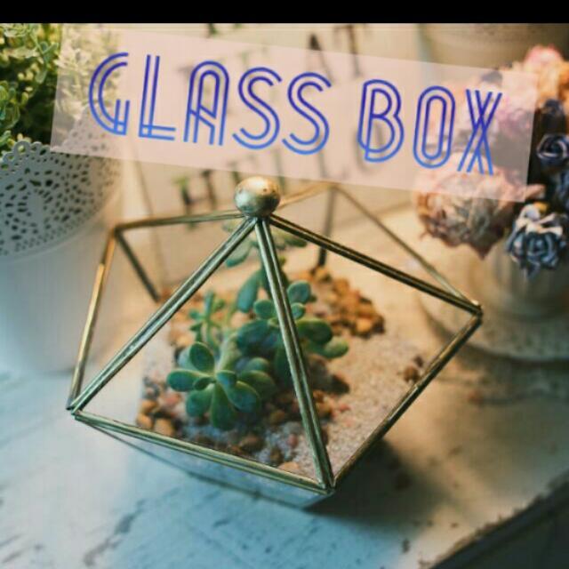Large In Stocks Geometric Terrarium Trinklet Glass Planter Box