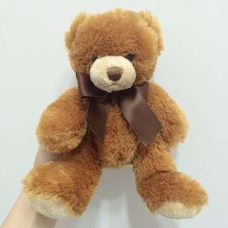 haigh's chocolate 熊